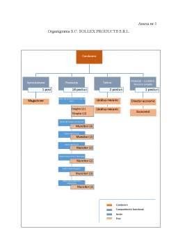 Licență - Studiu privind organizarea evidenței cheltuielilor și a calculației costurilor la o societate comercială cu activitate de producție și posibilități de perfecționare a acesteia
