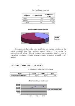 Proiect - Diagnosticul Economico-Financiar al SC Flavicom SA