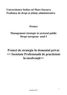 Seminar - Proiect de strategie în domeniul privat - Societate Profesională de practicieni în insolvență
