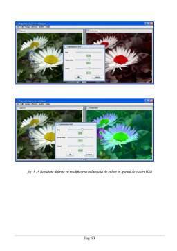 Disertație - Prelucrari grafice în Java