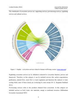 Proiect - Green and blue infrastructure - Cultural ecosystem services