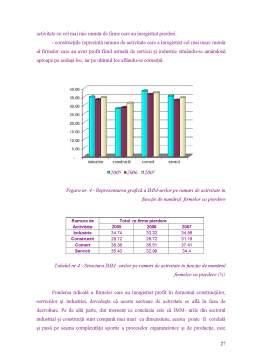 Disertație - Strategii de prevenire a riscurilor în cadrul intreprinderilor mici și mijlocii