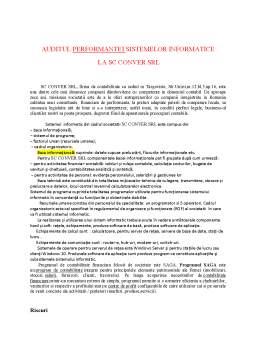 Referat - Auditul performantei sistemelor informatice la SC Conver SRL