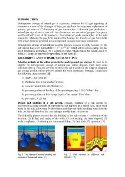 Referat - Some aspects regarding the underground storage of natural gas în saline deposits