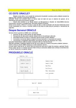 Referat - Baze de Date - Oracle