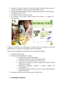 Proiect - Biobutanol