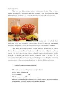 Proiect - Plantarea și procesarea fructelor de cătină proaspete și obținerea uleiului prin presare la rece