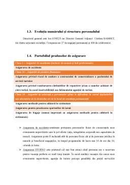 Proiect - Evaluarea activității unei societăți de asigurare. studiu de caz German Romanian Assurance SA
