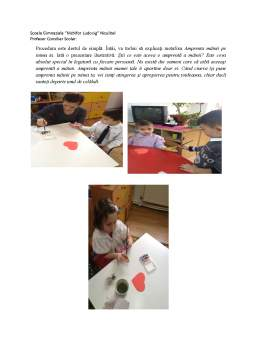 Proiect - Raport de activitate al studentei
