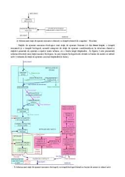 Referat - Epurarea apelor uzate - Tratarea în ceea ce privește îndepărtarea materialelor sedimentare organice și anorganice