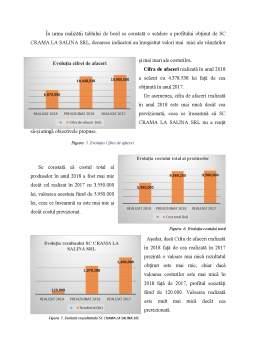 Disertație - Fundamentarea deciziilor pe conceptele de costuri și eficiență