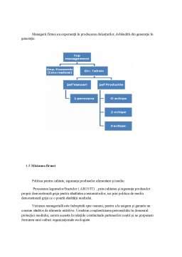 Proiect - Fundamentarea strategiei de dezvoltare a firmei SC Mib Prodcom SRL