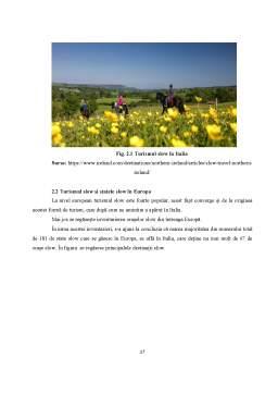 Disertație - Turismul durabil în cheile slow, soft și responsabilitate