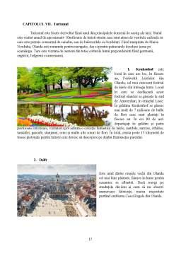 Proiect - Olanda