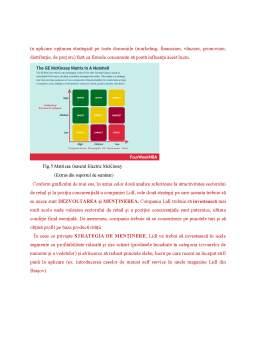 Proiect - Analiza activității de marketing strategic pentru compania LIDL
