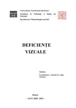 Referat - Deficiențe vizuale