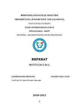 Referat - Instituția O.N.U.