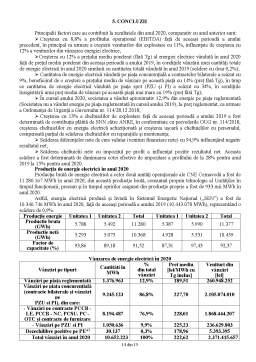 Proiect - Management economico-financiar analiza economico-financiară SN NuclearElectrica SA