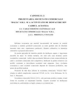 Proiect - Realizarea unui Subsistem Informatic pentru Desfacerea Stocurilor de Marfuri la SC Dalia SRL