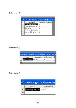 Proiect - Modul Microsoft Access