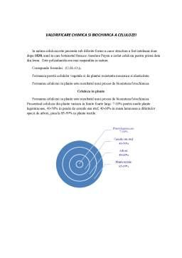Curs - Valorificare Chimica si Biochimica a Celulozei