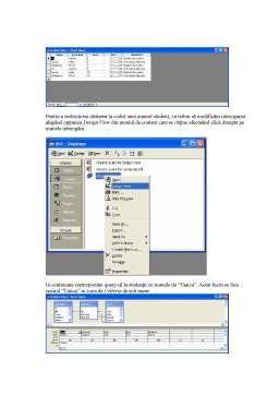 Curs - Microsoft Access