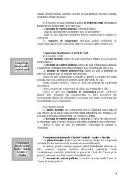Curs - Prelegerea a V-a - Investirea Institutionala - Competenta Instantelor Judecatoresti
