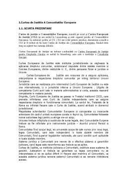 Referat - Actiunile Judiciare Specifice Dreptului Comunitar Aflate in Competenta de Jurisdictie a Tribunalului de Prima Instanta si a Curtii de Justitie a Comunitatilor Europene