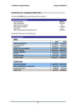 Curs - Creditare Bancara