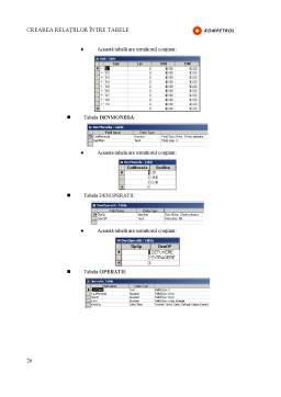 Curs - Notiuni Introductive despre Baze de Date - Microsoft Acces