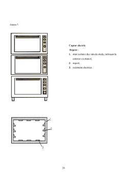 Proiect - Tehnologia de Fabricare a Checului cu Stafide
