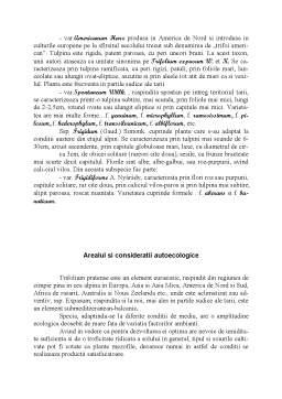 Referat - Trifoiul Rosu - Trifolium Pratense