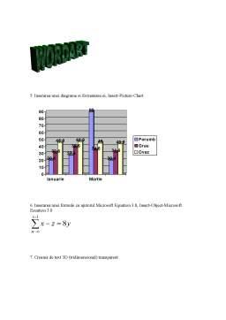 Proiect - Birotica si Telematica