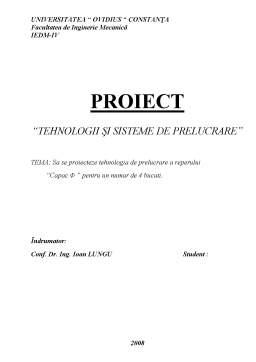 Proiect - Tehnologii și Sisteme de Prelucrare