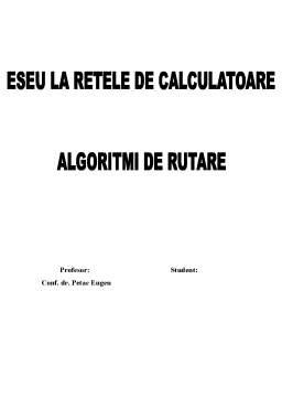 Referat - Algoritmi de Rutare