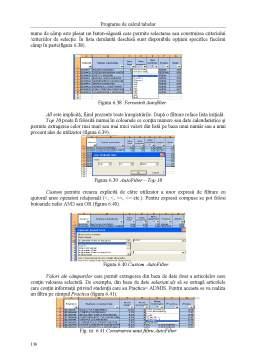 Curs - Tehnologii Informaționale pentru Administrație Publică