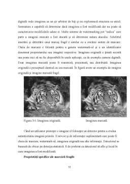 Licență - Principiile Steganografiei Digitale si Aplicarea lor Utilizand Fisiere Grafice