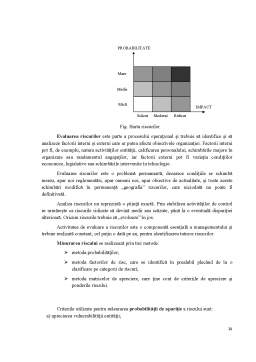 Curs - Reglementări și Proceduri Actuale în România privind Auditul Public Intern