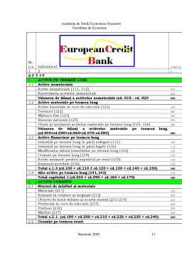 Referat - European CreditBank - Institutie Financiar-Bancara Fictiva