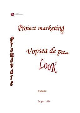 Referat - Promovarea unui Produs - Vopsea de Par Look
