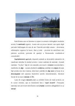 Proiect - Apa in Natura, Poluarea Apei Consecintele Poluarii Apelor si Protectia Apelor