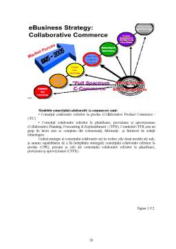 Licență - Comerț Electronic