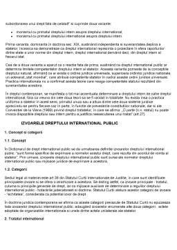 Curs - Drept International Public
