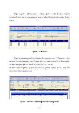 Proiect - ERP Exman-Navision