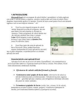 Referat - Microsoft Excel