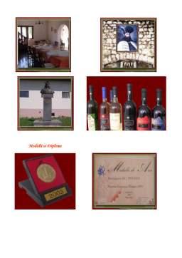 Proiect - Tehnologia de Obtinere a Vinului