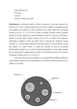 Laborator - Lucrari Practice Microbiologie