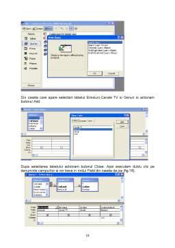 Referat - Baze de Date - Microsoft Access