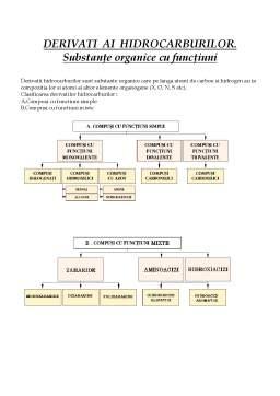 Referat - Derivatii Hidrocarburilor