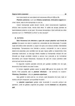 Curs - Ecofiziologie Vegetala - Capitolul 3